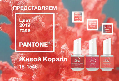 PANTONE ОБЪЯВИЛ ЦВЕТ 2019 ГОДА!